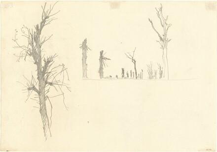 Devastated Trees [verso]