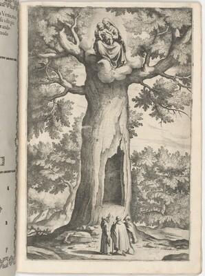 Apparition of the Virgin in the Beech Tree (Faggio dell'apparizione della Vergine) [plate P]