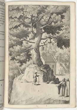 Beech Tree with the Bell (Faggio della campana) [plate X]