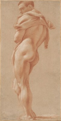 Standing Male Nude Seen from Behind