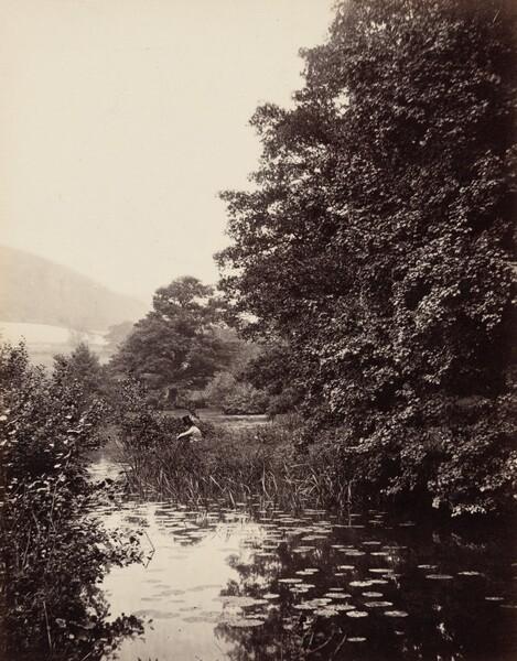 On the River Mole, Surrey