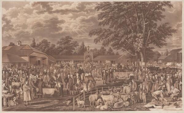 Wobourn Sheepshearing