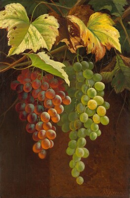 Two Bunches of Grapes