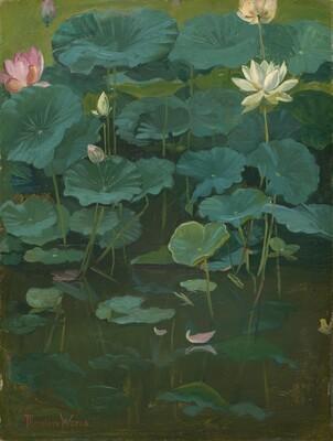 Buddha's Flowers: Lotus, Tokyo