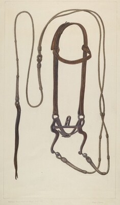 Bridle with Braided Rawhide Reins
