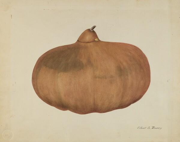 Pioneer Salt Gourd