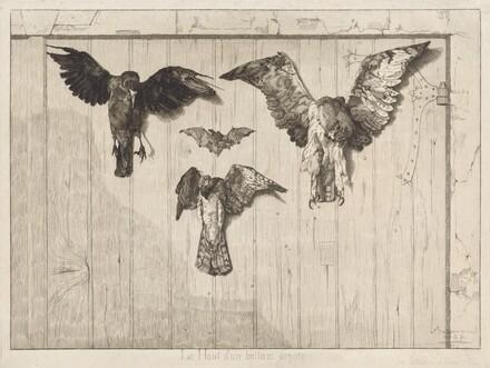 Birds Nailed to a Barn Door (Le haut d'un battant de porte)