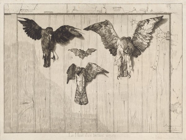 Birds Nailed to a Barn Door (Le haut d'un battant de porte)