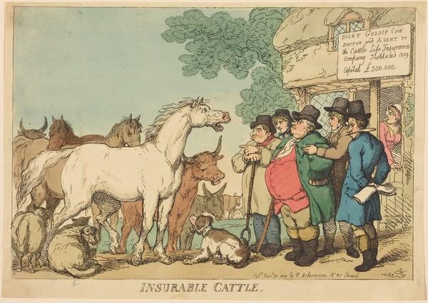 Insurable Cattle