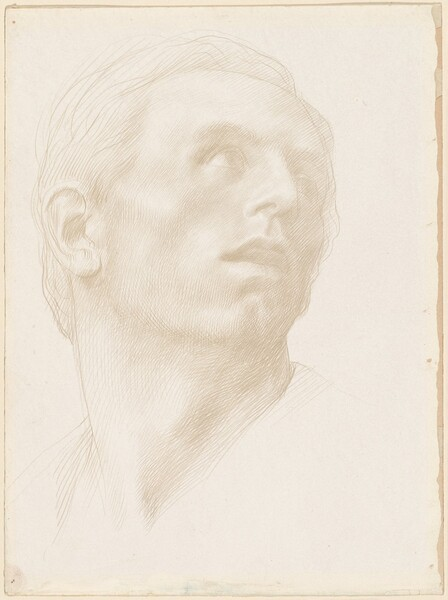 Head of a Man Looking Up to the Right