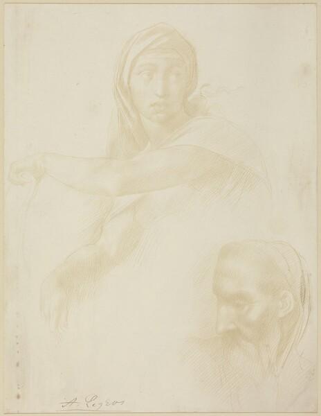 Study of Delphic Sibyl; Head of a Man