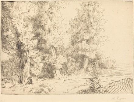 In the Forest of Fontainebleau  (Dans la foret de Fontainebleau)