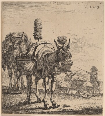 Two Mules