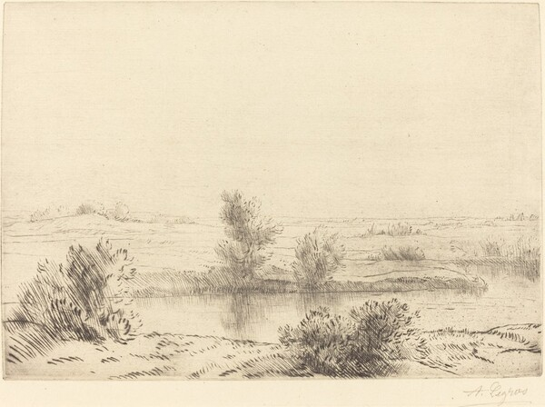 Marsh (Les marais)