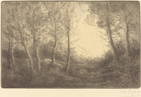 Sunrise, Woods of Clamard (Lever du soleil, bois de Clamard)