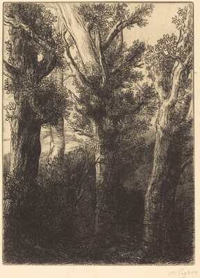 German Forest, Downley