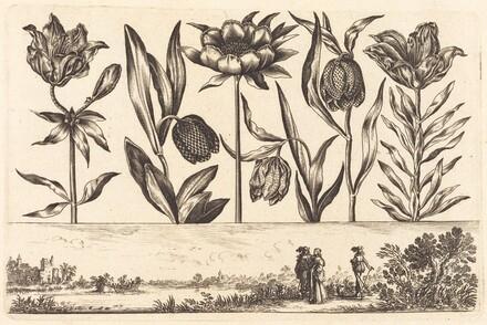 Flower Print no.11