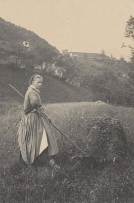 The Harvest, Mittenwald
