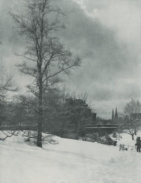 A Winter Sky—Central Park