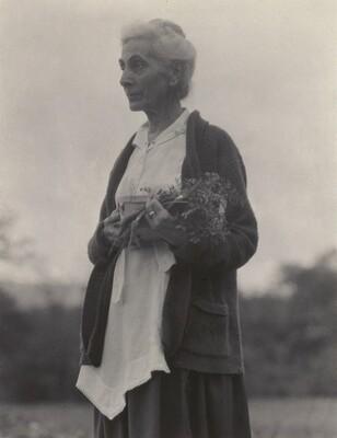 Katherine Herzig