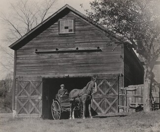 image: Horse and Carriage