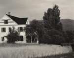 image: House and Trees, Lake George
