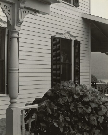 House and Grape Leaves