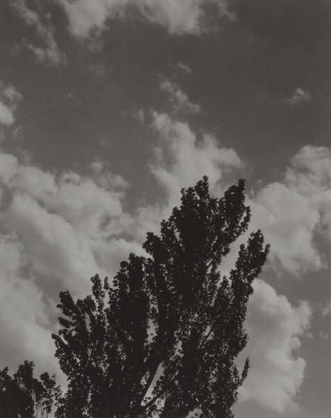 Portrait—K.N.R., No. 2 or Songs of the Sky C2