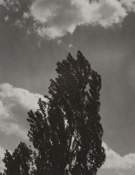 Portrait—K.N.R., No. 3 or Songs of the Sky C3