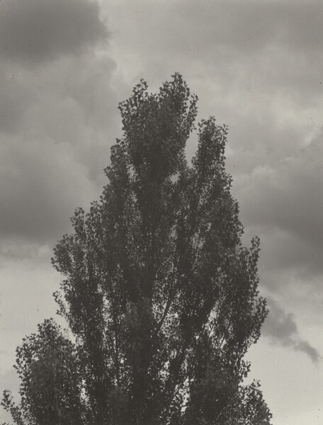 Portrait—K.N.R., No. 4 or Songs of the Sky C4