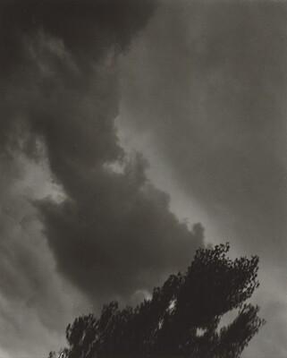 Portrait—K.N.R., No. 5 or Songs of the Sky C5