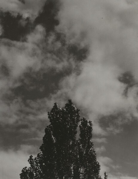 Portrait—K.N.R., No. 6 or Songs of the Sky C6