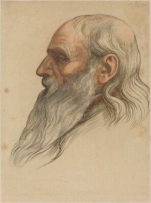 Study of a Man's Head with a Full Beard