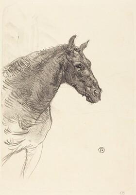 Old Horse (Le vieux cheval)