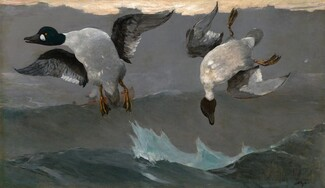 Winslow Homer, Right and Left, 19091909