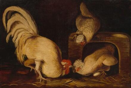 Farmyard Fowls