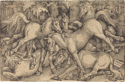 Group of Seven Horses in Woods