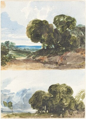 Two Sketches of Trees