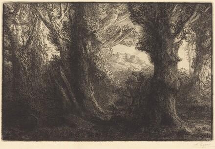 In the Forest of Conteville  (Dans la foret de Conteville)