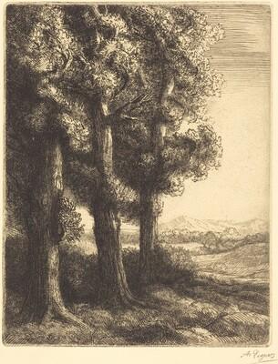 Corner of a Wood (Coin d'un bois)