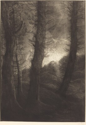 Large Trees Seen against the Sun  (Les grandes arbres: Effet du soir)