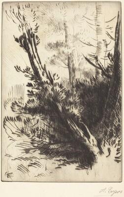 In the Woods (Dans les bois)