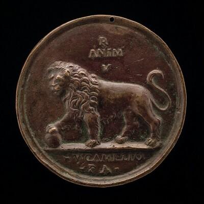 A Lion