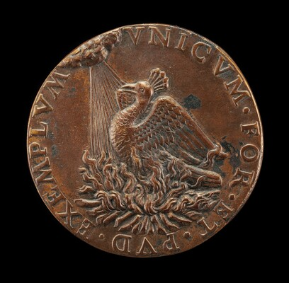 Phoenix on a Pyre Looking at the Sun [reverse]