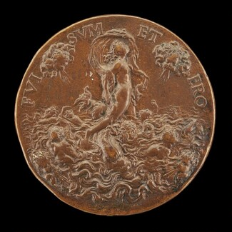 Fortune on a Dolphin [reverse]