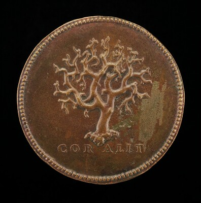 Stalk of Branching Coral [reverse]