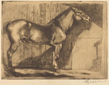 Pony (Le poney)