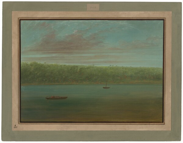 View of the Shore of the Amazon - Boat Sketch