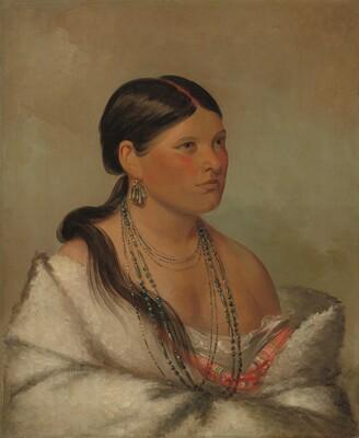 The Female Eagle - Shawano