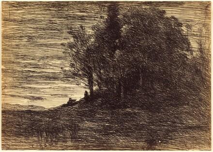 Hermit's Woods (Le Bois de l'ermite)